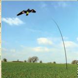 """Vogelverschrikker """"Black Hawk"""" Kite 7 meter set_"""