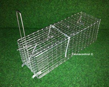 Rattenvangkooi inklapbaar verzinkt