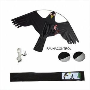 black-hawk vlieger