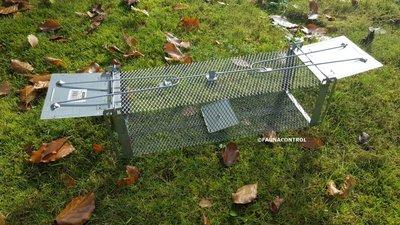 Rattenvangkooi 2 deurs verzinkt